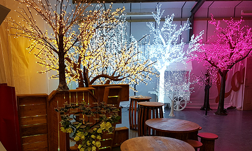 LED tree hire shrewsbury