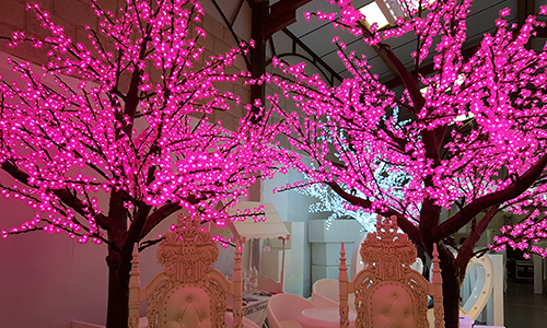pink LED tree hire