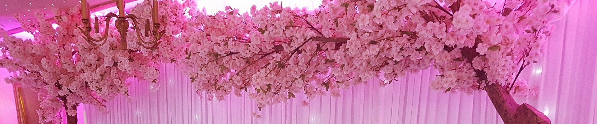 blossom arch hire